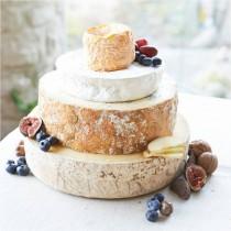 BI_cheese_cake 1