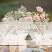 bridalidol_how_to_choose_colour_of_the_wedding_ivory_13
