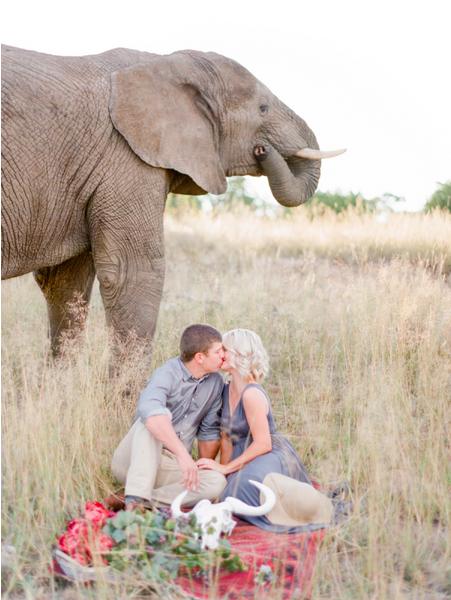 bridalidol_romantic_safari_south_africa_and_engagement_photo_sesion_3