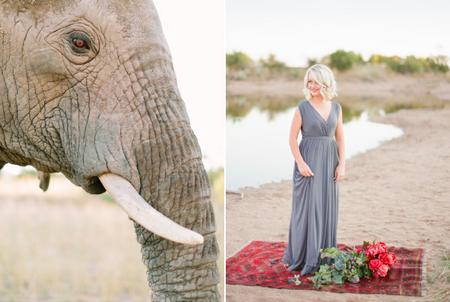 bridalidol_romantic_safari_south_africa_and_engagement_photo_sesion_4