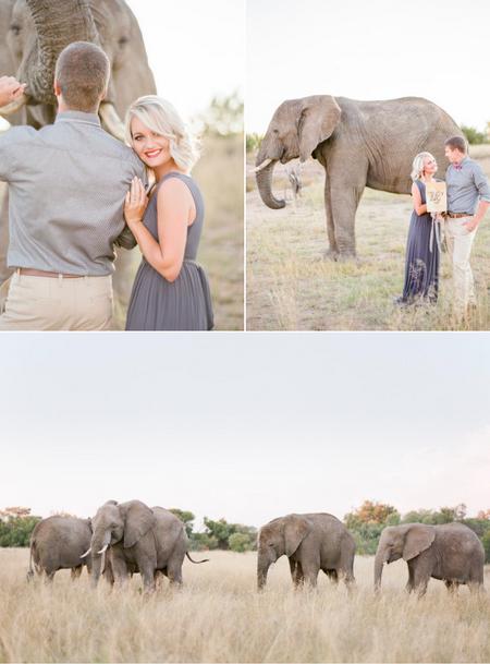 bridalidol_romantic_safari_south_africa_and_engagement_photo_sesion_6