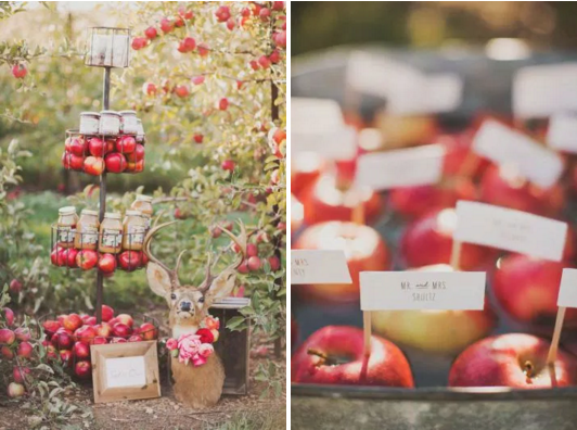 bridalidol_fall_wedding_5_trends_apples_2